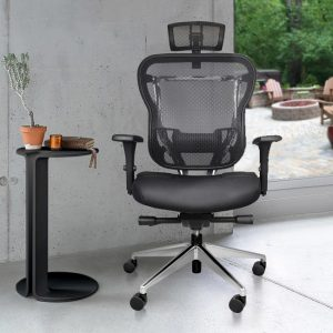 Rika Home Office Chair With Headrest