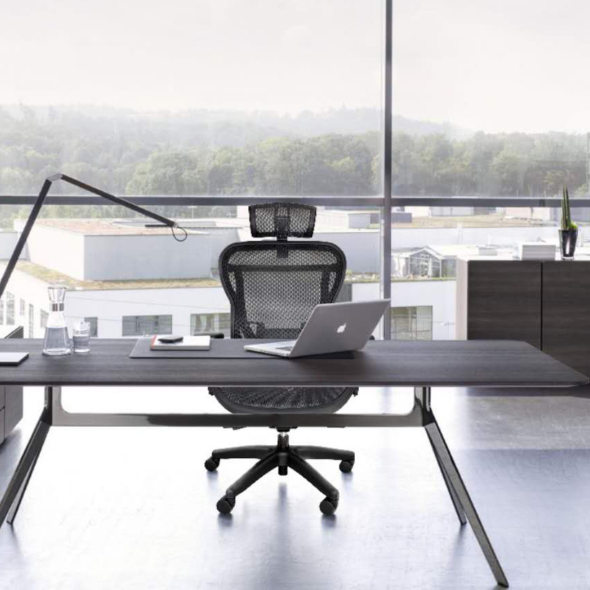 Rika Home Office Mesh Chair With Headrest
