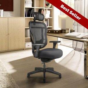 Best-Selling Rika Chair by Buzz Seating